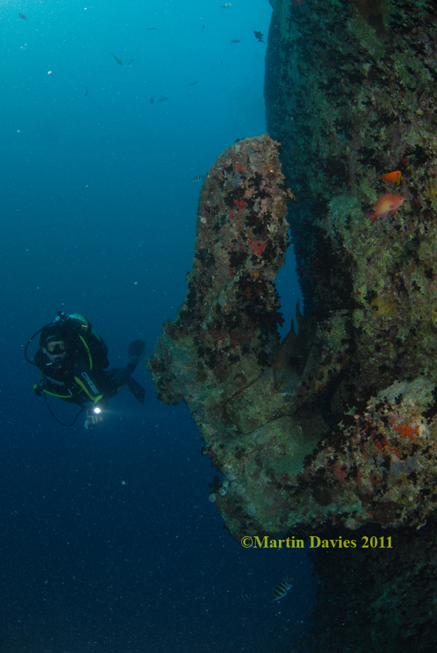 Red-Sea-18022011-Thistlegorm-©Martin-Davies032