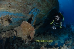 Images from Red Sea trip February 2011 on Hurricane