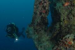 Red-Sea-18022011-Thistlegorm-©Martin-Davies032