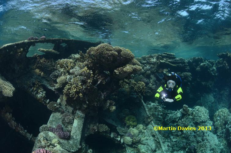 Red-Sea-Abu-Galawa-Kabir-23042012-©Martin-Davies-013