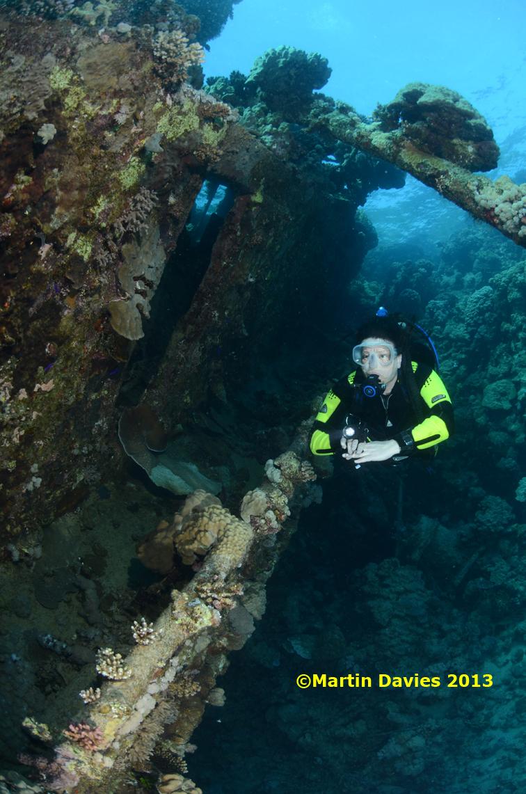 Red-Sea-Abu-Galawa-Kabir-23042012-©Martin-Davies-037