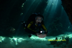 Image taken in the Red Sea June 2012