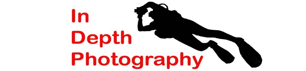 In Depth Photography 1 web