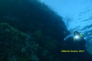 Red-Sea-Daedalus3-21042012-©Martin-Davies-041