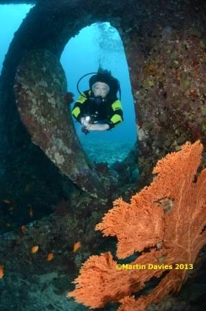 Red-Sea-Kingston-02052012-©Martin-Davies-058