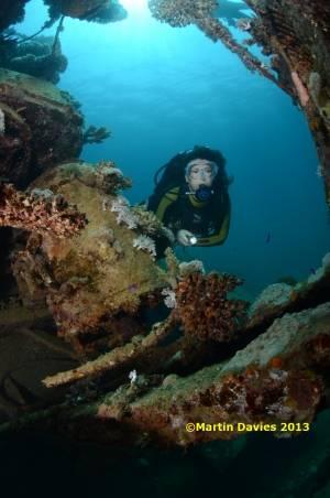 Red-Sea-MV-Hamada-21062012-©Martin-Davies-092