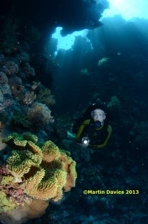 Red-Sea-Rocky-Island18062012-©Martin-Davies-020